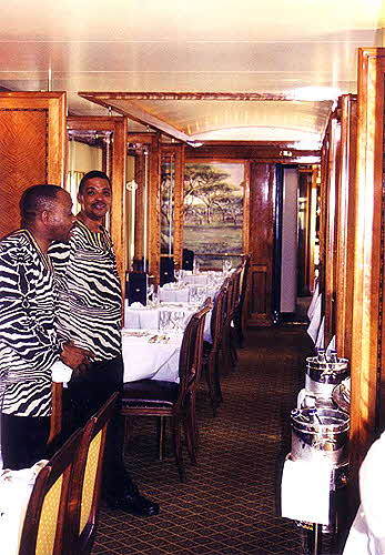 Blue Train Two Zebra Shirts and Dining Car