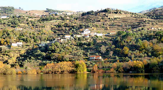 Portugal Roman Vine Teraces on the Douro