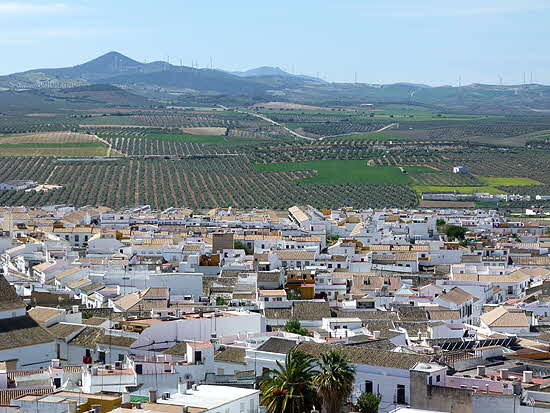 Andalucia Village and Olive Groves