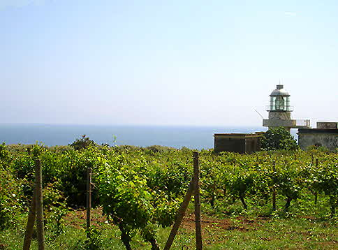 Capofaro Lighthouse 1