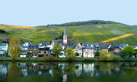 Mosel Town and Vineyards
