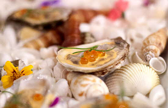 Shemogue Oysters